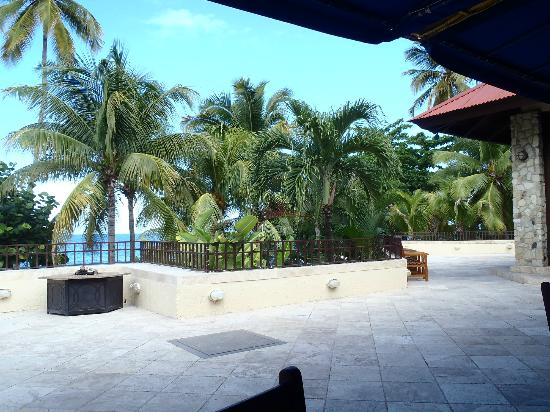 Renaissance St. Croix Carambola Beach Resort & Spa: view from breakfast terrace