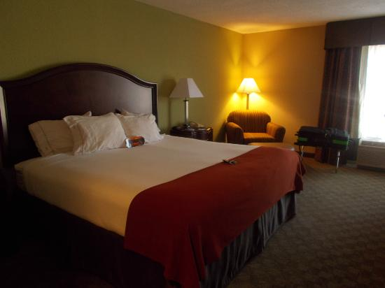 Holiday Inn Express Peachtree Corners/Norcross: KING SIZED BED