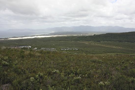 Grootbos Private Nature Reserve : View of the lodge from our hike