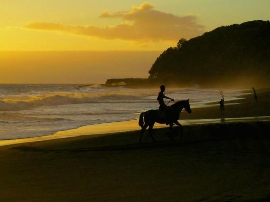 Tanna Iwaru Beach Bungalows: Horse riding at sunset on the beach
