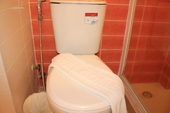 โรงแรมบูดาโค: Clean Toilet