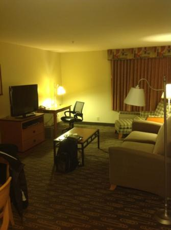 Hampton Inn and Suites Seattle North Lynnwood: Living Area