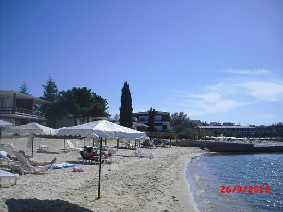 Xenia Ouranopolis: Pool/Beach area