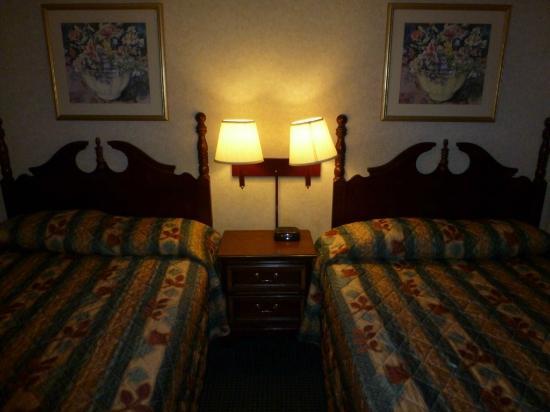 麻塞諸塞州雷克諾斯騎士飯店照片