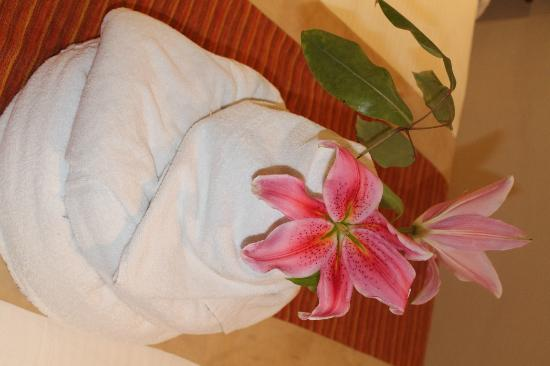 Sarova Panafric: Towel dec 1