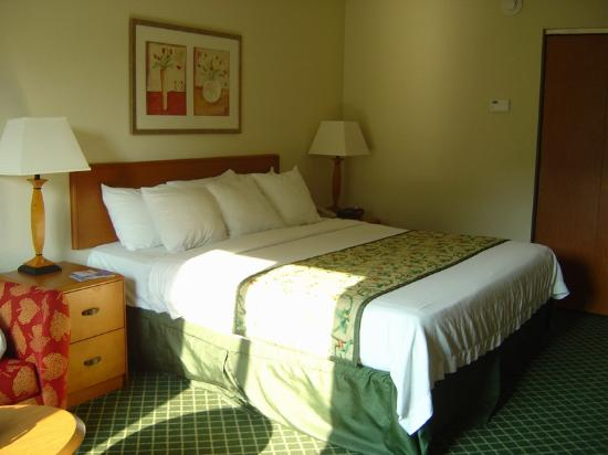 Fairfield Inn & Suites Chattanooga South/East Ridge: our room