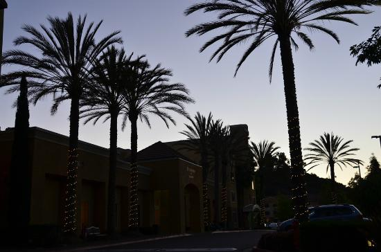 Residence Inn San Diego Mission Valley: Front entrance at night