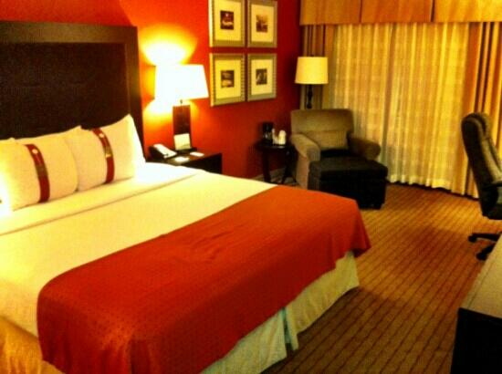 Holiday Inn Itasca (Woodfield Area): standard room