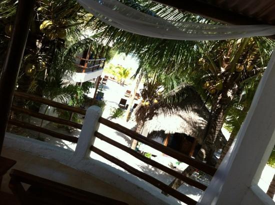 Casa Iguana Holbox: vista de la habitación