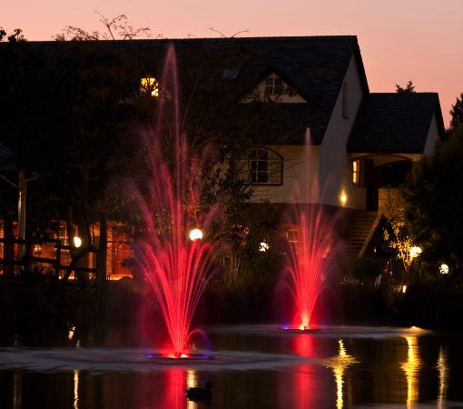 Gooderson Fabz Garden Hotel & Conference Centre : The dam at night