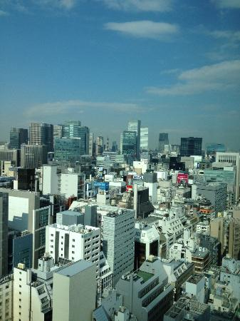 Mitsui Garden Hotel Ginza Premier: View from the room