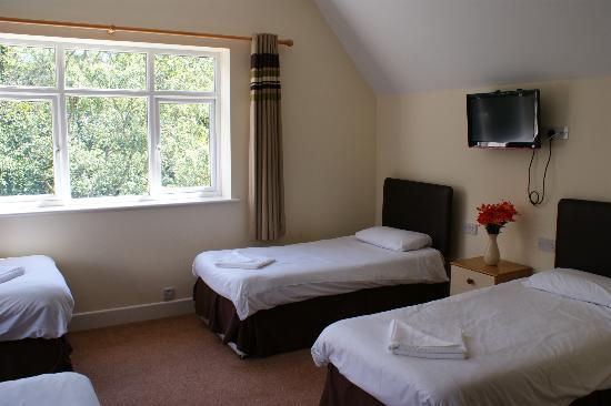 Mount Stuart Hotel: Room 15