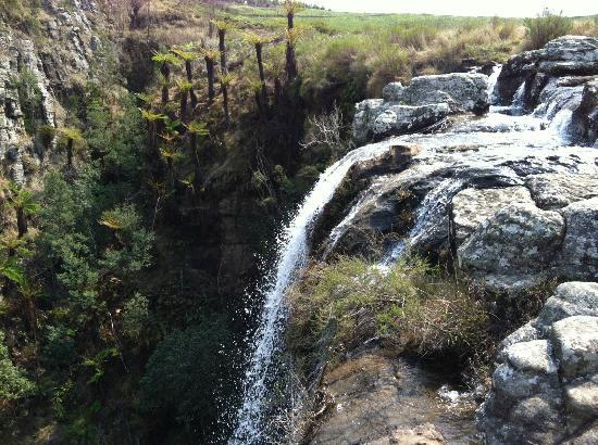 aha Greenway Woods Resort: Lisbon Falls (from the top)