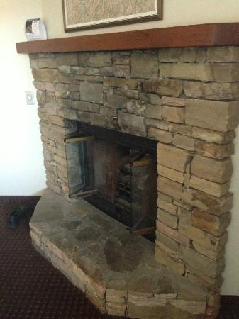 Quality Inn & Suites at Dollywood Lane: Fireplace