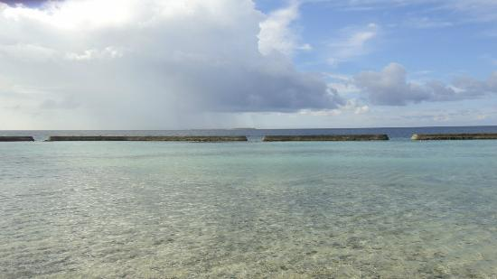 Ellaidhoo Maldives by Cinnamon: the reef