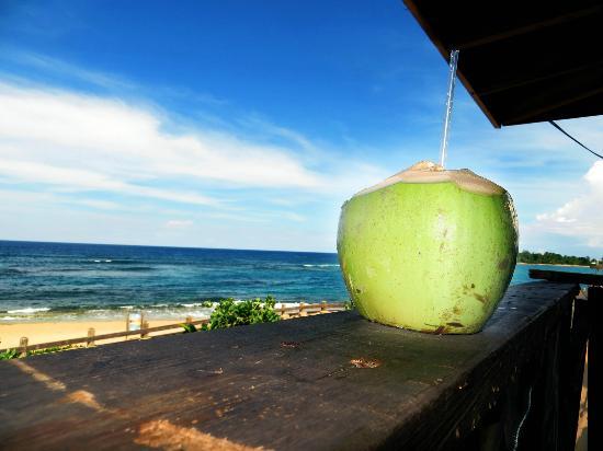 San Juan Food Tours Review