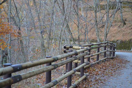 Aliran sungai Nishizawa: 遊歩道が完備