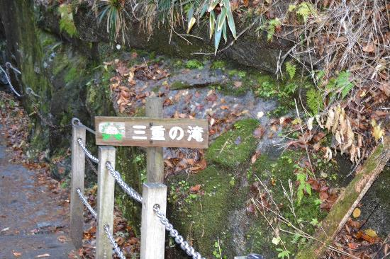 Nishizawa Canyon: 三重の滝看板