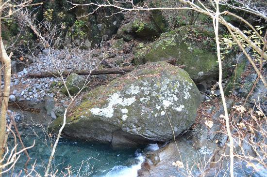 Nishizawa Canyon: 奇岩(フグ岩) 