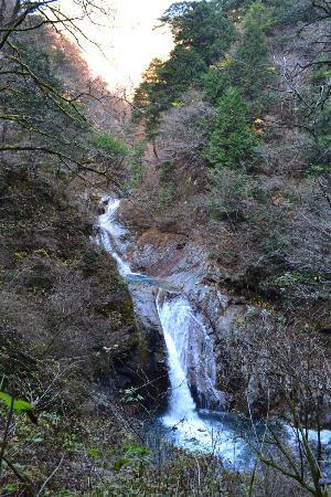 Nishizawa Canyon: 七ツ釜五段の滝