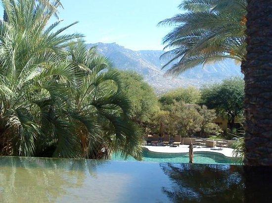 Miraval Arizona Resort & Spa: Miraval
