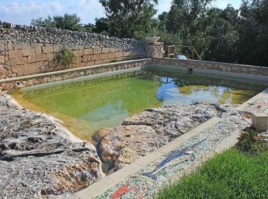 Il Collegio : Plunge pool too small for swimming