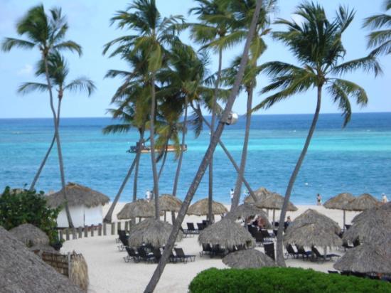 Now Larimar Punta Cana: Beach & Palapas