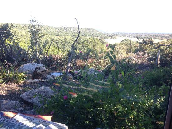 Quiet Hill Ranch - Fredericksburg: bird watching area.
