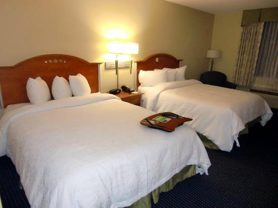 Hampton Inn Ft. Lauderdale /Downtown Las Olas Area, FL. : Room