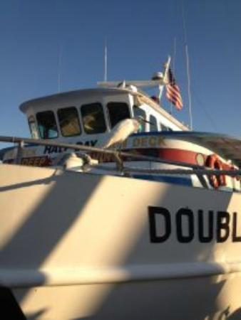 Sea Captain Resort on the Bay: Double Eagle Deep Sea Boat at Marina