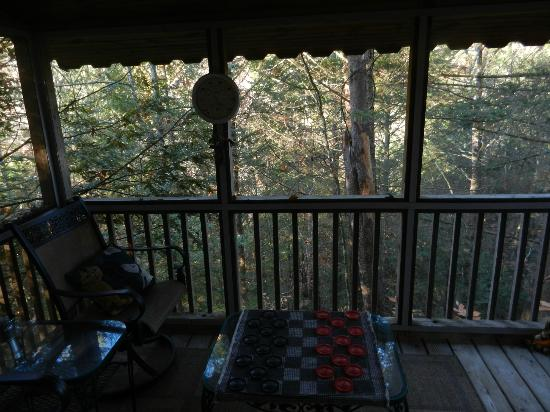 Stonecreek Cabins: Veiw from  screened in porch