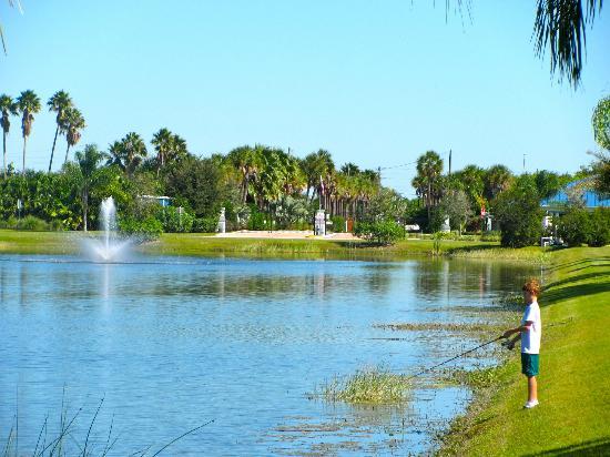 Silver Palms RV Resort: Resort Grounds