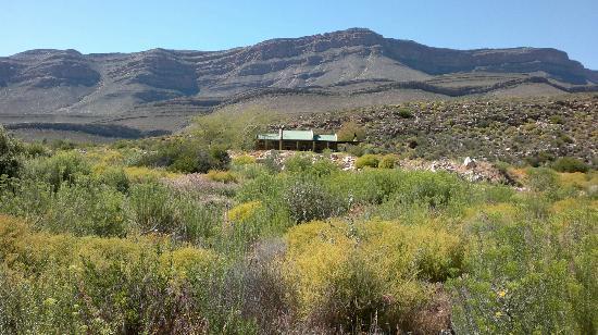 Mount Ceder Guest Cottages: Puntjie