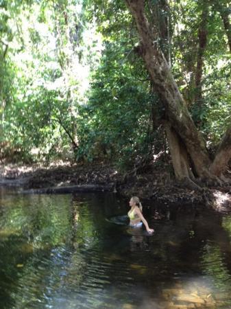 Heritage & Interpretive Tours: rainforest swimming