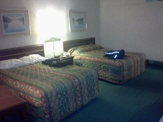 Pocono Inn At Water Gap: The beds