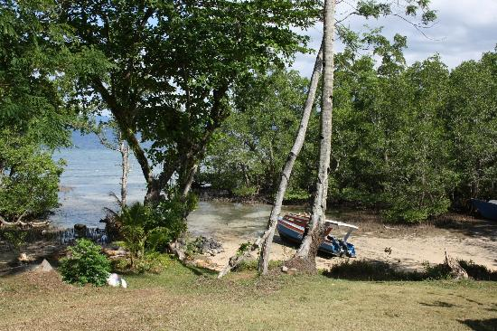 Bunaken SeaGarden Resort: View from the hotel grounds on the beach/mangrove