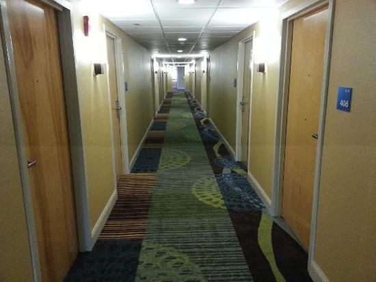 Wyndham Garden Glen Mills Wilmington: Hallway