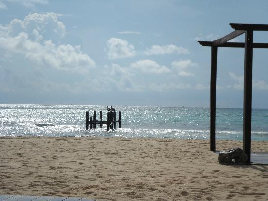 IBEROSTAR Paraiso Del Mar: .