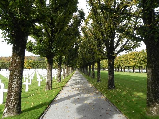 American Cemetery: Tree lined road & crosses
