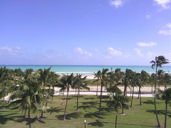 The Betsy - South Beach: view from rooftop deck