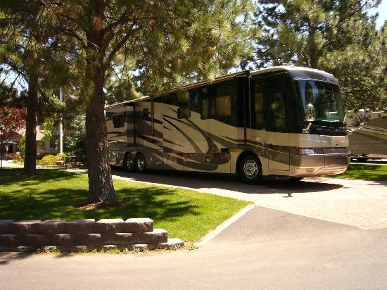 Crown Villa RV Resort : Big Rig Friendly
