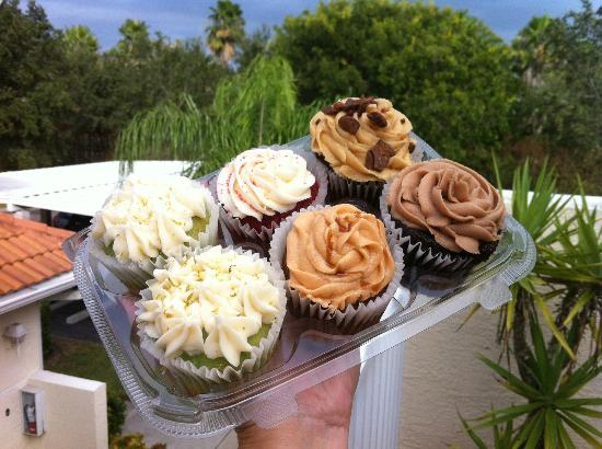 Cupcakes in Paradise