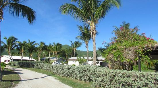 Orient Beach - Picture of Club Orient Resort, Orient Bay ...