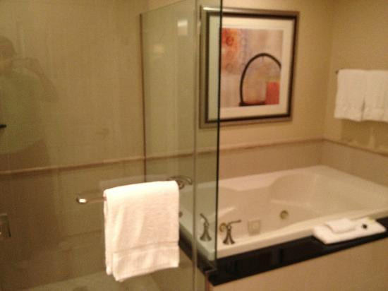 Signature At MGM Grand: Shower And Hot Tube