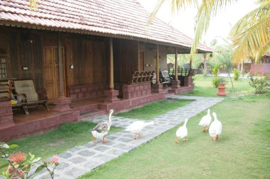Kondai Lip Backwater Heritage Resort: Il bungalow