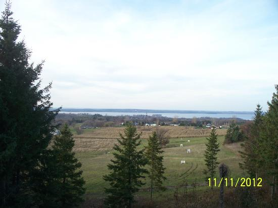 Hillview Haven Estate: The beautiful view from the balcony!