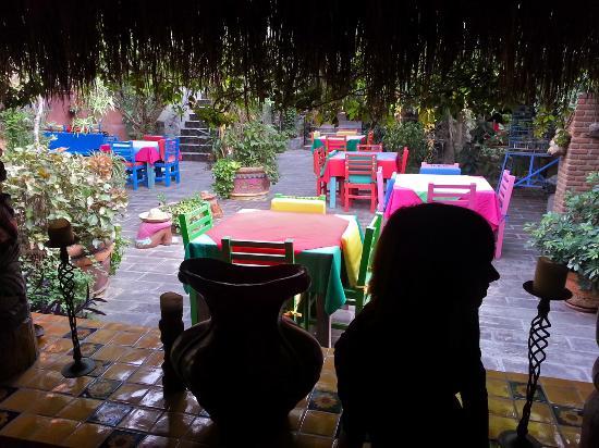 #El Nido at Hacienda Escondida: View from dinning room