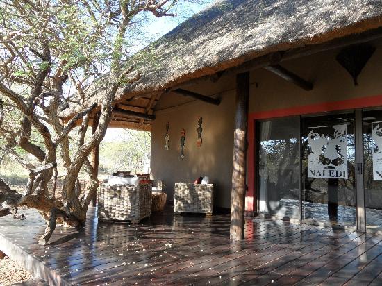 Naledi Bushcamp and Enkoveni Camp: Notre terrasse 