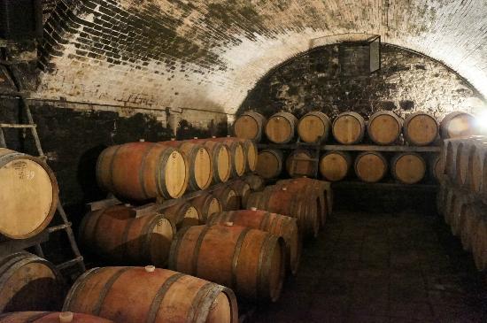 Fattoria Casa Sola: Câmara de envelhecimento do vinho