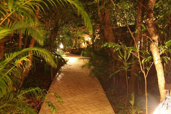 Pousada Terra dos Goitis: los pasillos